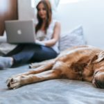How to manage wellbeing and productivity during this stay at home phase